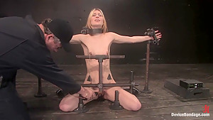 Calico Impaled on an electrified dildo and made to orgasm.