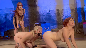 Incredible fetish, lesbian porn clip with fabulous pornstars Bella Rossi, Ella Nova and Penny Pax from Whippedass