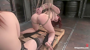 Hottest fetish adult clip with best pornstars Claire Adams and Trinity Post from Whippedass